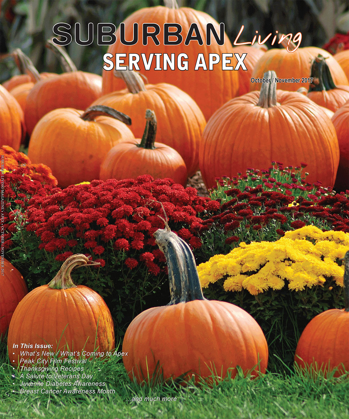 Apex August/Sept 17.indd